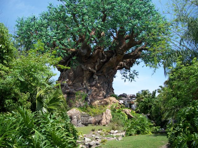 Disney's Animal Kingdom. Photo by J. Jeff Kober.